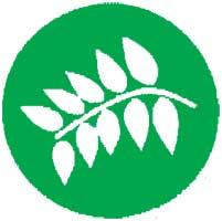 ВЕЛЕС (22 июня – 6 июля  и 8 – 22 июля)
