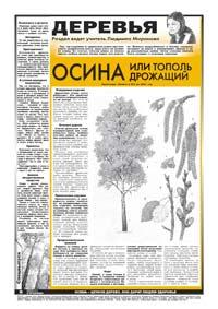 26 страница. Тематическая страница. Деревья