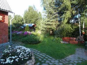 images01.olx.ru