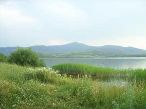 Озеро Белое, гора Синюха (Курьинский район)_Сотова М