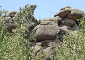 Рис. 5. Микроформы в скальных выходах