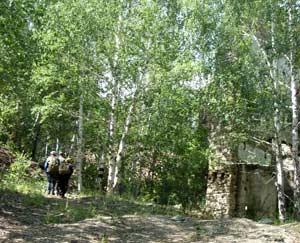 Рис. 15. Остатки стен и фундамента колыванстроевского здания