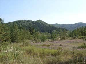 Рис. 21. Правый берег речки Локтевки и северный склон Динамитной горы