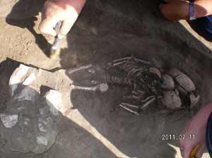 Археологическая экспедиция - 2011г.