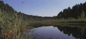 Озеро Чёрное