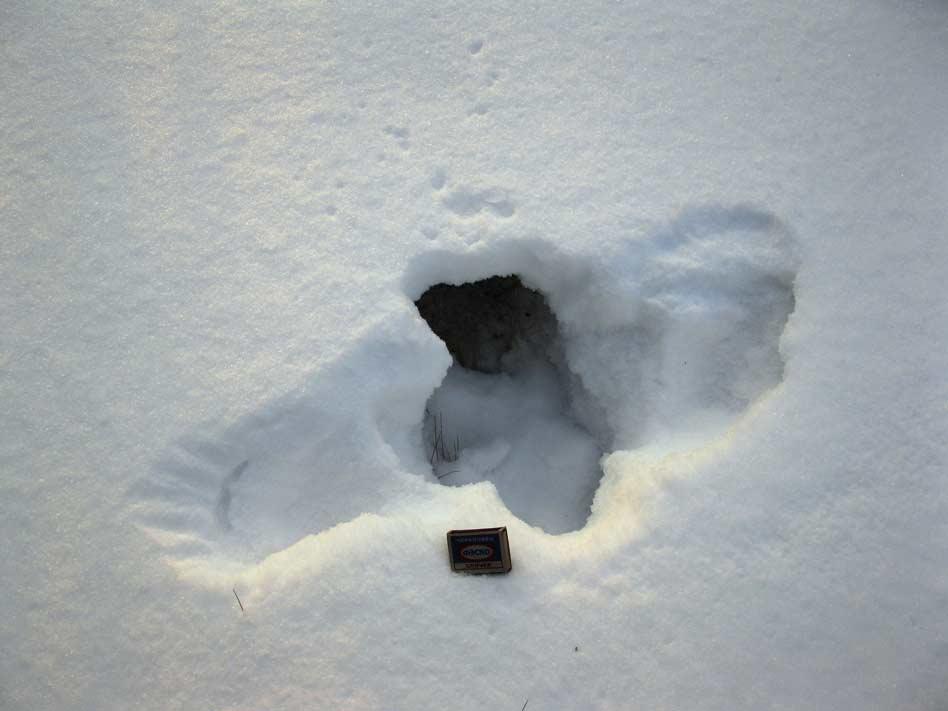 После небольшого снега