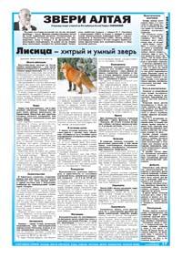 17 страница. Звери Алтая. Лисица – хитрый и умный зверь