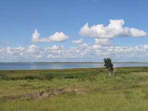 Озеро Кулундинское