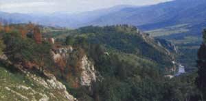 Начало ущелья в верховьях Страшного Лога. Фото В. Вистингаузена