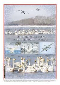 Фотоколлаж «Зимняя сказка Лебединого озера»