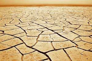 17 июня. Всемирный день по борьбе с опустыниванием и засухой