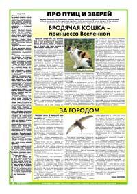 64 страница. Про птиц и зверей