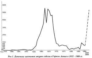 Рис. 1. Динамика заготовок шкурок соболя в Горном Алтае в 1933–1989 гг.