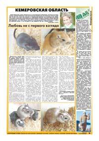 47 страница. Кемеровская область