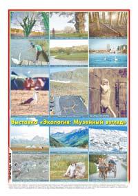 Последняя страница. Фотоколлаж «Выставка «Экология: Музейный взгляд»