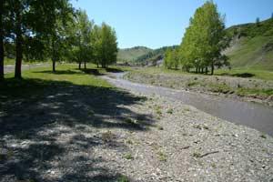 Современное состояние расчищенного русла реки Сосновка