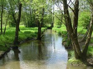 На речке Серебрянке