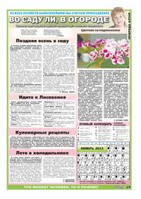 43 страница. Тематическая страница. Во саду ли, в огороде