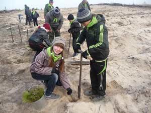 В качестве иллюстрации использовано фото Ирины Чухловой «Посади дерево на месте гари!» с выставки «Живая природа Алтая»