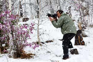 Фото Романа Зайковского «Рождение фотографии», выставка «Живая природа Алтая»