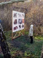 В Алтайском крае открыт новый туристический маршрут