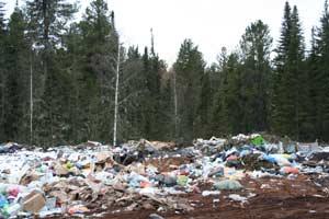 Полигоны ТБО не должны находиться на лесных участках