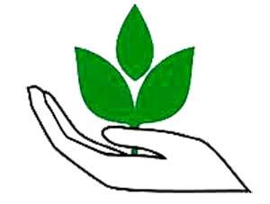 5 июня – День эколога в России