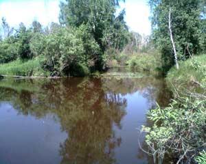 Река Бурла