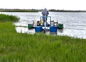 Очистка озера Ключевского (фото В. Бакаенко)