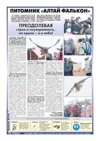 10 страница. Питомник «Алтай Фалькон»