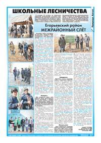 17 страница. Школьные лесничества