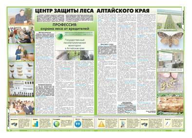 40-41 страница. Центр защиты леса  Алтайского края
