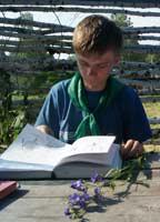 Занятие по морфологии растений
