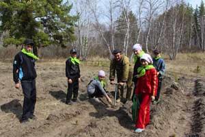 10 мая (в 2014 году). Всероссийский день посадки леса