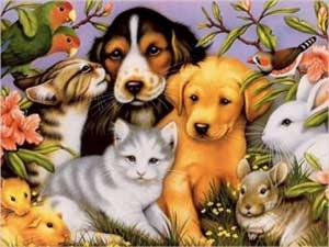 30 ноября – Международный день домашних животных