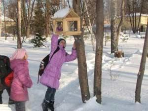 Областная акция «Помоги птицам зимой»