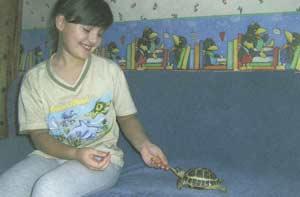Юлия Есина, лицей № 101, руководитель В.Н. Гаврилова.