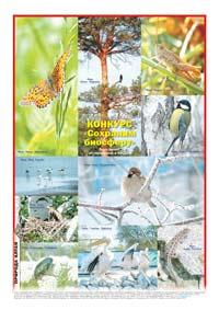 52 страница. Фотоколлаж «Конкурс «Сохраним биосферу». Фото детей, обучающихся в АКДЭЦ»«