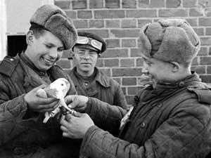 Необычный спецвыпуск «Помним. Гордимся. Живём», посвящённый 70-летию Победы