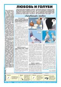 14 страница. Любовь и голуби