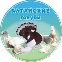 Алтайские голуби