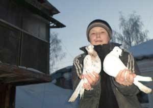 Юный голубевод Никита Дрянев проводит исследовательскую работу