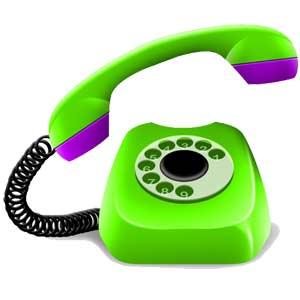 «Зелёный телефон» в Барнауле