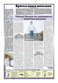 12 страница. Братья наши меньшие с точки зрения науки