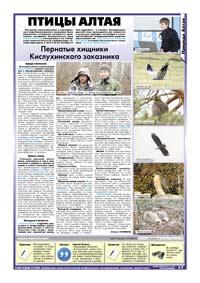 17 страница. Птицы Алтая
