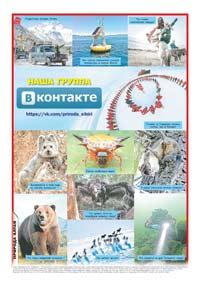 96 страница. Фотоколлаж «Наша группа «ВКонтакте» https://vk.com/priroda_sibiri»