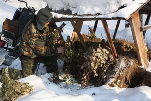 «Час прямого провода» на тему «Поддержка диких животных в зимнее время»