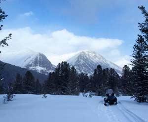 Зимний маршрут по заказнику