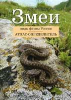 Змеи: виды фауны России