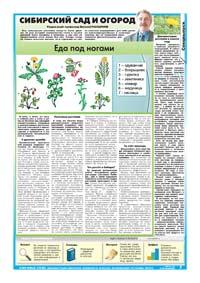 33 страница.Сибирский сад и огород